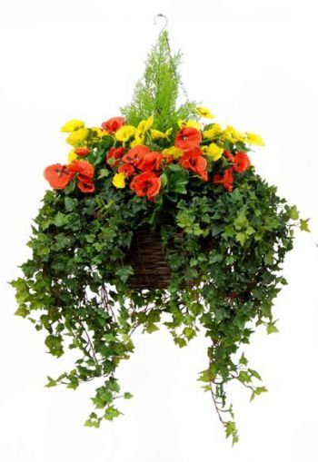 Pansy Deluxe Baskets