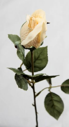 Rose Closed Bud Single Stem