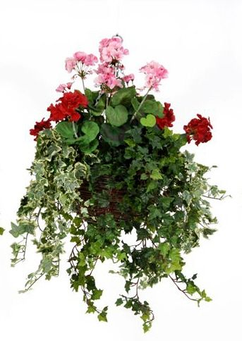 artificial silk geranium large hanging basket just. Black Bedroom Furniture Sets. Home Design Ideas