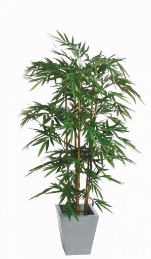 Bamboo Natural IFR