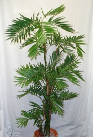 Extra Tall Artificial Christmas Trees