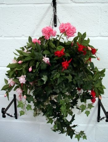 Fuchsia Deluxe Hanging Basket