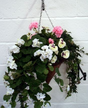 Flower Cone Hanging Basket