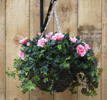 Azalea Small Hanging Basket