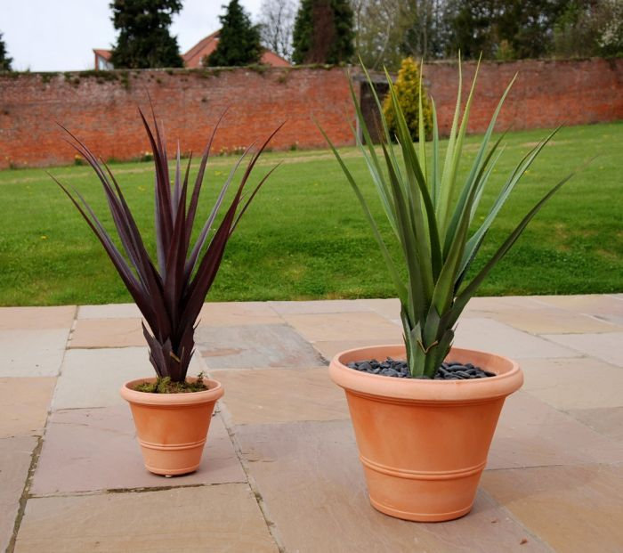 Showing a Green and Burgundy Artificial Pandanus Plants in Terracotta planters for illustration purposes.