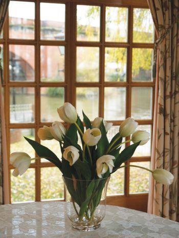 Tulips in Glass Arrangement