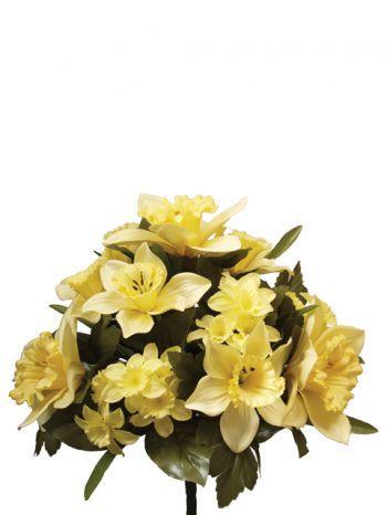 Daffodil Bush