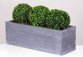 Triple Topiary Boxwood Ball Plants in Troughs