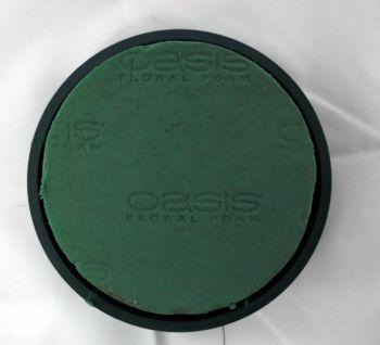 Oasis, Posy Pad