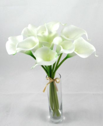 Calla Lily Bundle