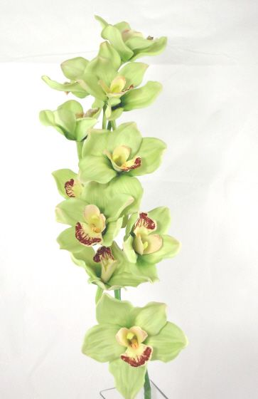 Artificial Cymbidium Orchid Real Touch Just Artificial