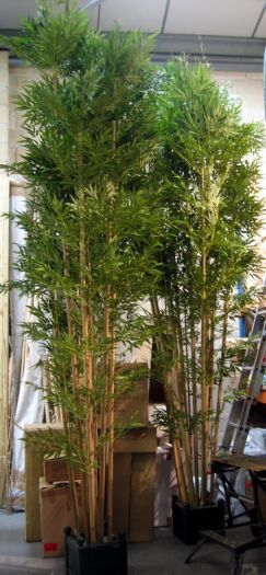 Handmade Large Bamboo Tree IFR
