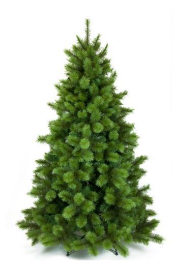 Bristol Christmas Pine Tree