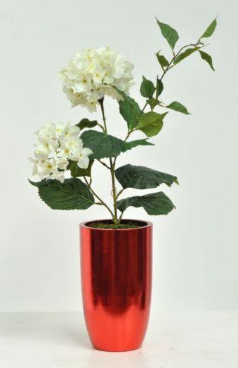 Hydrangea Fraille Single Arrangement