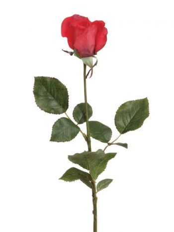 Rose Bud (Real Touch)