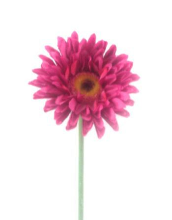 Mini Gerbera Flower