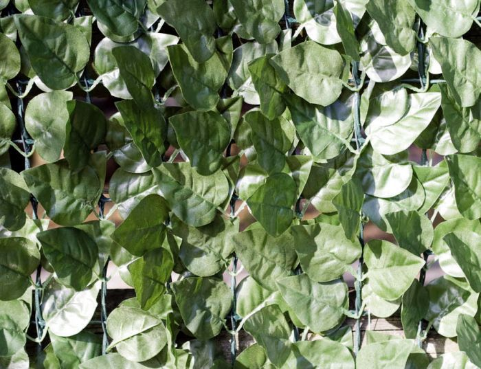 Artificial Ivy Hedge Screen close up