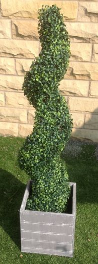 Boxwood Topiary Spiral Tree