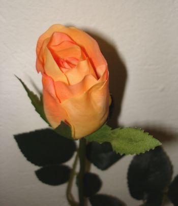 Rose Bud Medium
