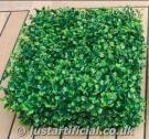 Artificial (Bulk) Hedging IFR - Image Caption: Picture of individual IFR Boxwood Panel 25cm x 25cm