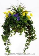 Pansy Large Hanging Basket