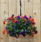 Pansy Ball Hanging Basket