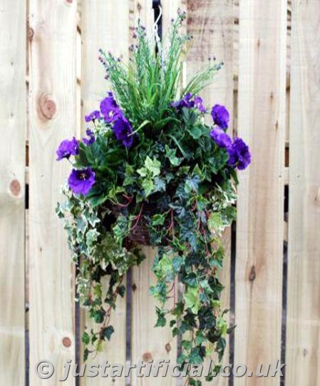Hanging Flower Baskets For Winter : An error has occured