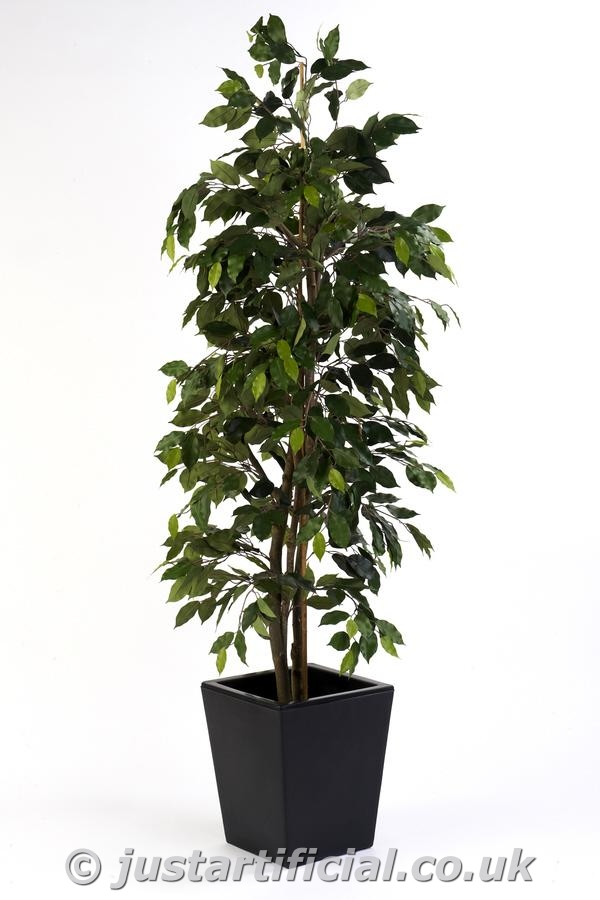 fake ficus tree artificial silk ficus tree fr 180cm green 3659