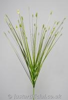 Tipped Grass Single Stem