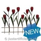 Tulips with Fence Wall Art
