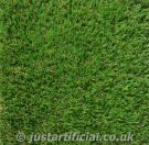 Classic Lawn Grass - Image Caption: close up of our Artificial Classic Lawn Grass