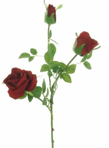 Rose Supreme Garden Spray, Medium