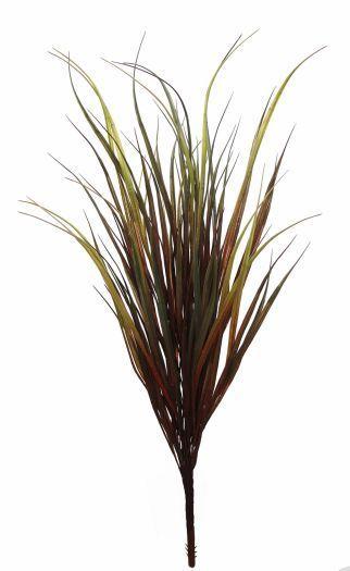 Grass Yucca Bush