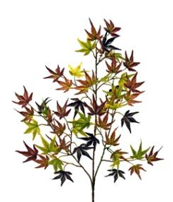 Maple Japanese Mini Leaf Spray