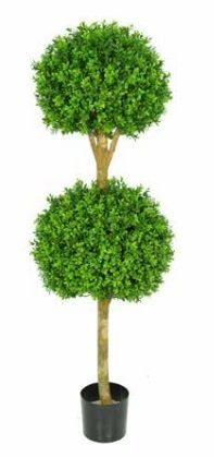 Topiary Buxus Double Ball Tree