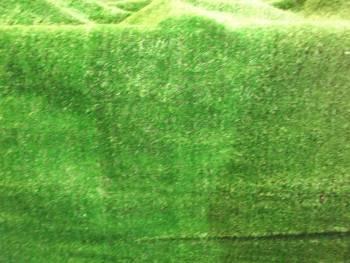 Display Grass