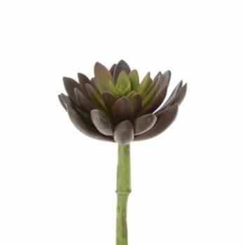 Succulent Lotus Pick