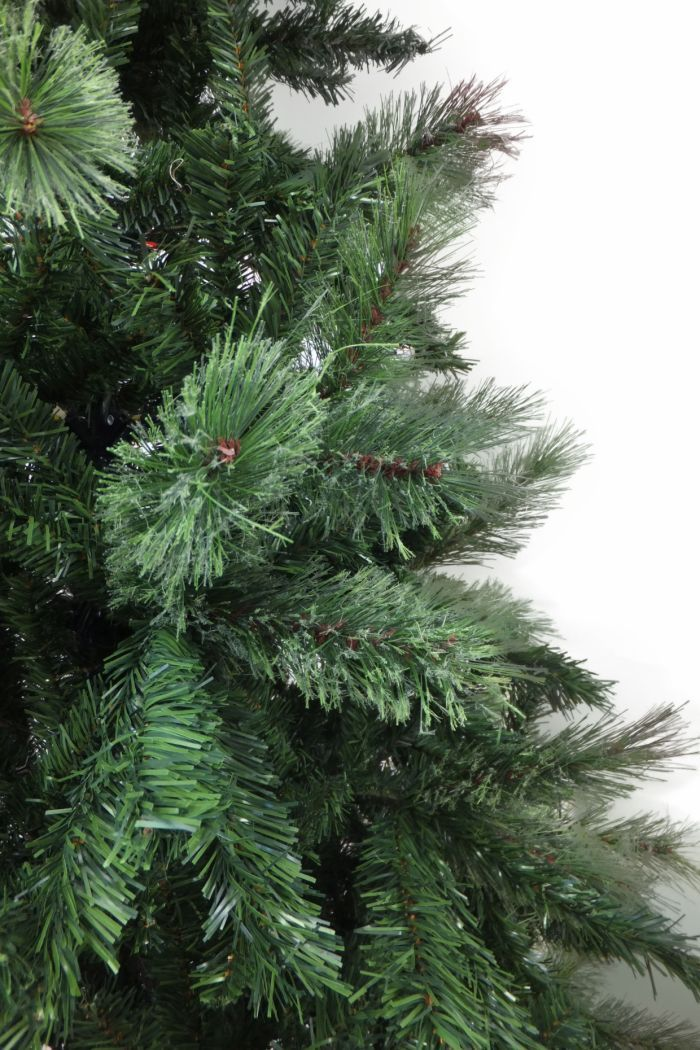 Christmas Trees Clearance Sale