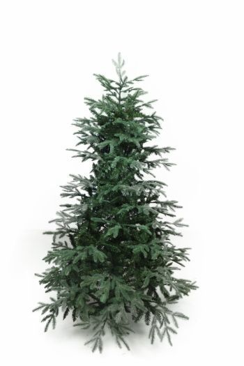 Noble Pine Christmas Tree