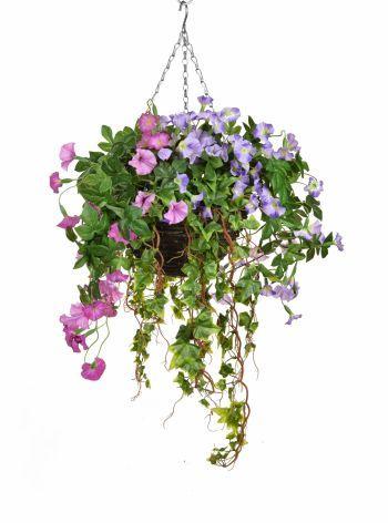 Petunia Mixed Hanging Basket