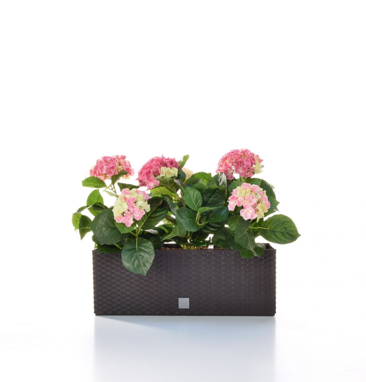 artificial silk hydrangea trough just artificial. Black Bedroom Furniture Sets. Home Design Ideas