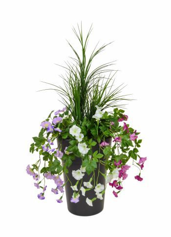 Petunias & Grass in Linea Pot