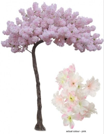 showing the actual colour of the Pink Blossom on the small inset image