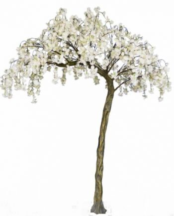 Curved Weeping Cherry Blossom Bespoke Tree