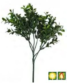 Foliage Buxus Green FR UV