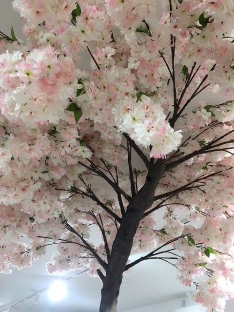 Looking up at the Pink artificial Blossom tree