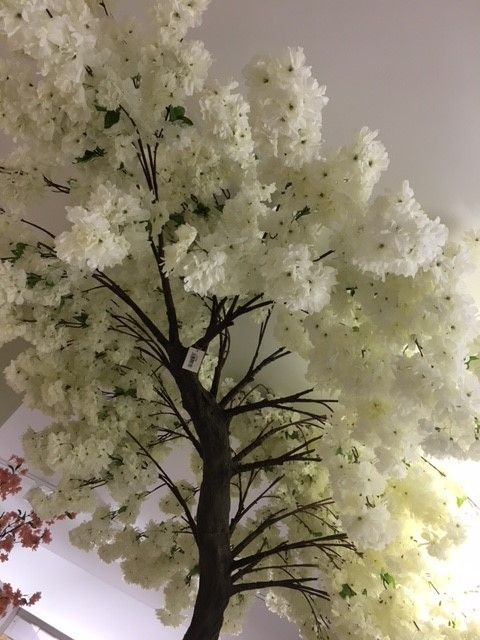 Looking up at the artificial Cream Blossom tree