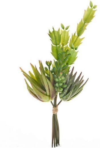 Cactus Mixed Bundle