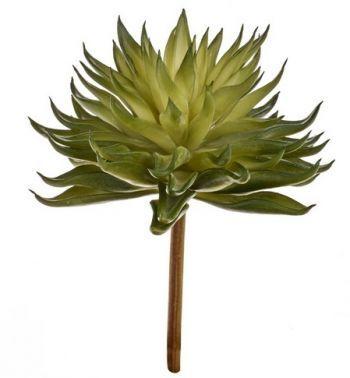 Cactus Pick