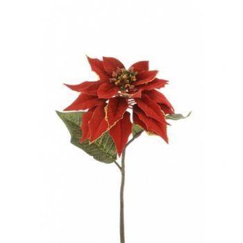 Luxury Poinsettia Single Stem x6 Saver Pack